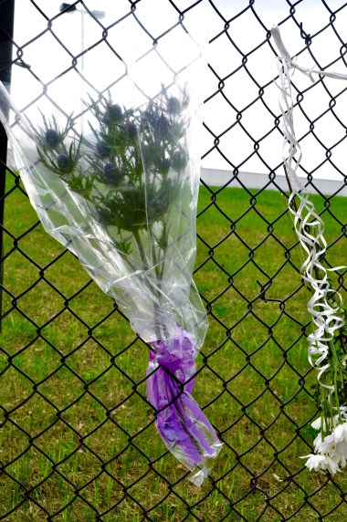 My purple thistle flowers with Paisley Park in the background. The large purple stone from a ring almost visible at the bottom of the bag.