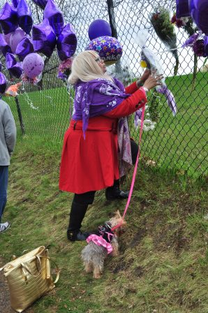 My friend, Amanda, placed her purple flowers and purple balloon with a message for Prince on the fence as her terrier, Gigi, looked on.
