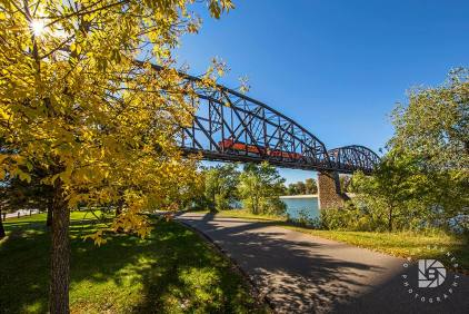 September 30: Coming Across the Missouri River railroad bridge. I caught this train coming across this historic bridge in Bismarck, N.D., by chance. With the fall colors, it made for a colorful photo. I did get the sun peeking thru the leaves in the upper left-hand corner.