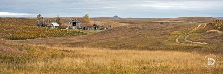 October 16: Farmstead from the past with nothing but a winding prairie trail leading to the yard.