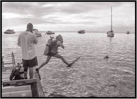 November 28: Charter boats on the island of Dominica in the Caribbean transport scuba divers and snorkelers to some the best underwater locations in the world. But plenty of spectacular fish and sea creatures could be seen right off our hotel's dock in the town of Roseau. Here, Scott Dusterhoft's 12-year-old daughter, Avery, already a certified scuba diver, enters the water for a quick look-see. As for me, I took a course in swimming at the University of North Dakota after getting in trouble in high school at the Sheyenne River swimming beach in Harvey, N.D. The lifeguard, the sister of one of my best friends, rescued me, much to my embarrassment. A decade later, I nearly joined the fishes permanently when I was caught in an ocean undertow off La Jolla, Calif. No, it's best for me to stay out of water deeper than my bathtub.