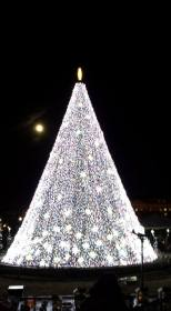 Full moon rising behind the National Christmas Tree.