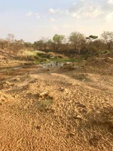 In some areas in Uganda, rivers have been reduced to a trickle because of climate change.