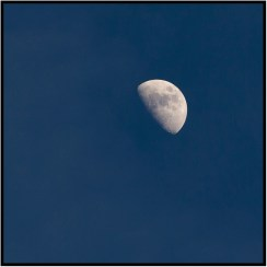 April 4: Moon early tonight over Bloomington, Minn. It will be full April 11.