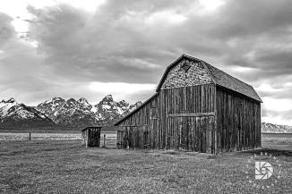 "June 23: ""The Moulton Barns on Mormon Row"": The farthest north barn. Shot in black & white."