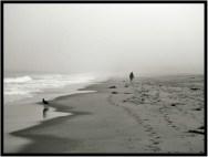 The beach at Monterey, Calif.