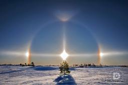 Walked out to this spot and liked the image of this lone tree highlighted by the main beam of the sun. The sun dogs are the main white spots opposite the sun on the right and left parts of the halo.