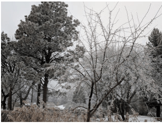 Screen Shot 2018-01-23 at 10.35.43 AM