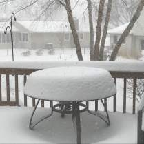 April 14: The view at our place in Bloomington, Minn., at 5 p.m. today. More snow on the way.