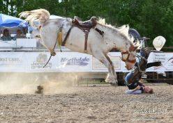 June 21, 2019: Wojo's Island Lake Rodeo presented by Lepier Oil. Island Lake, MN. Photo by Russell Hons All rodeo photos are available in a gallery here: https://russellhonsphotography.shootproof.com/WOJO_2019