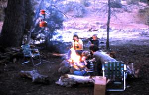 Campfire, Gila National Forest, New Mexico.