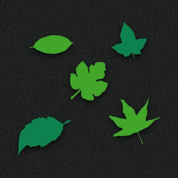 Leaf Assortment - Leaf Assortment