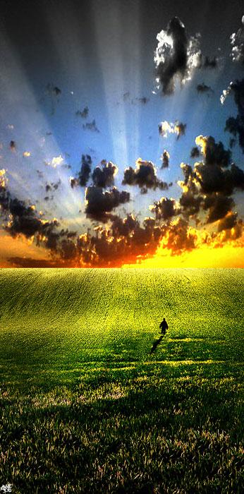 Ember a mezőn a felkelő nap fényében