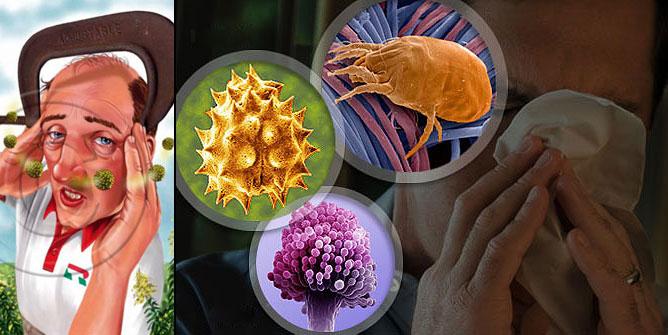 Allergiát okozó tényezők.