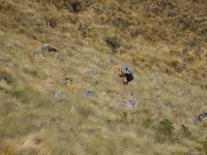 Terhet cipelő sherpa.