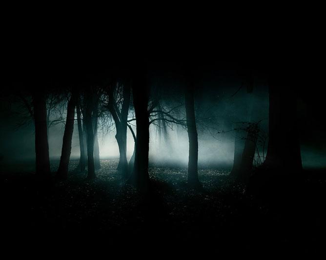 Sötét erdő.