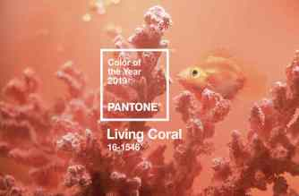 pantone - living coral - unicornia dreams - color del año 2019 - living coral color del año - pantone living coral - coral - tendencias colores - color 2019 - pantone coral