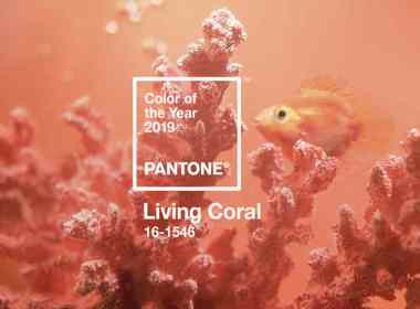 pantone - living coral - unicornia dreams - color del año 2019 - living coral color del año - pantone living coral - coral - tendencias colores - color 2019 - pantone coral