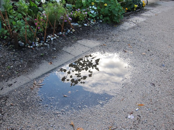 03 puddle reflection
