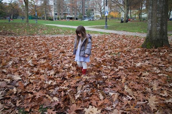 01-leaf-pile-gwen