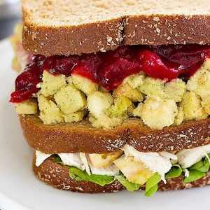Ross Geller's Thanksgiving Sandwich with the Moist Maker + Video