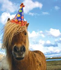 Birthday Milestones Unicorn Trails