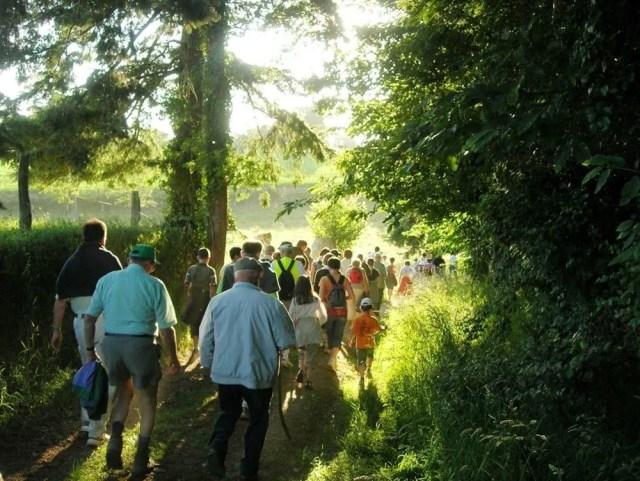 Promenades au cœur des montagnes de la baie du Mont-Saint-Michel Romagny-Fontenay