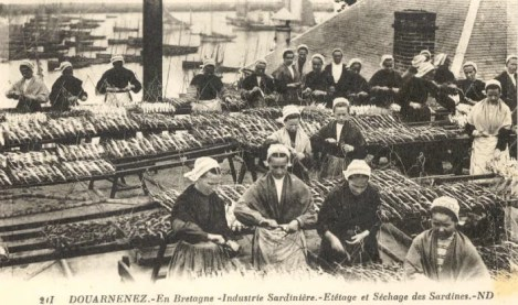 Sardinières Douarnenez