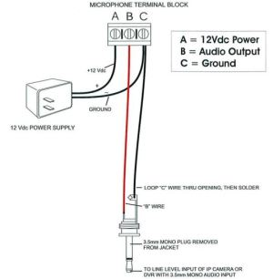 How to connect a microphone to IP cameras?
