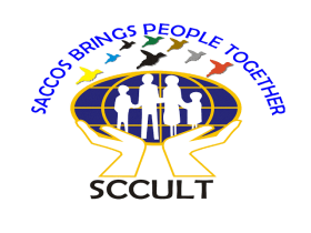 Digital Finance Officer At SCCULT, August 2020