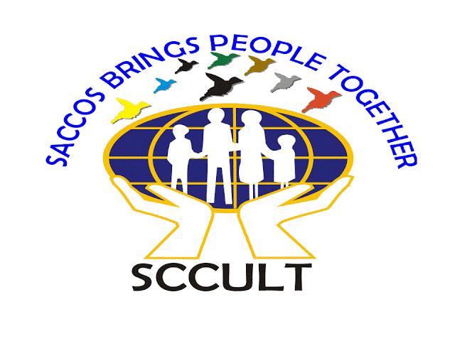 Digital Finance OfficerAt SCCULT, August 2020