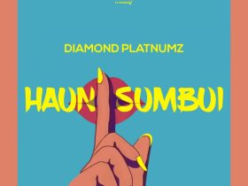 Diamond Platnumz Haunisumbui Official Audio MP3