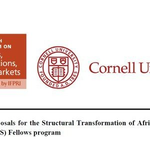 STAARS Fellowship Program 2021 For Researchers
