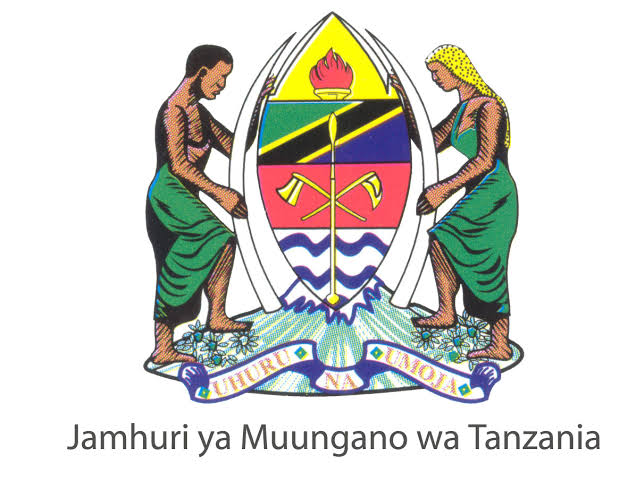 Nembo Government Job At Mkalama District Council, 2021