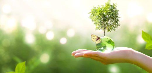 Hvor miljøvennlige er UiA?