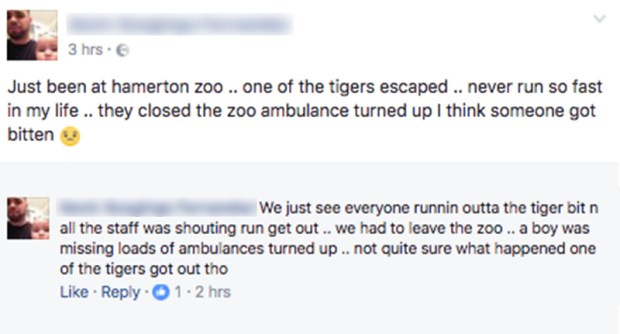 Hamerton Zoo Speak Out After Serious Incident witness