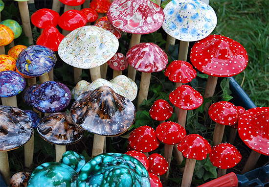 Magic Mushrooms Can Reboot Brain Of Depressed People, Study Finds MAgic Mushrooms