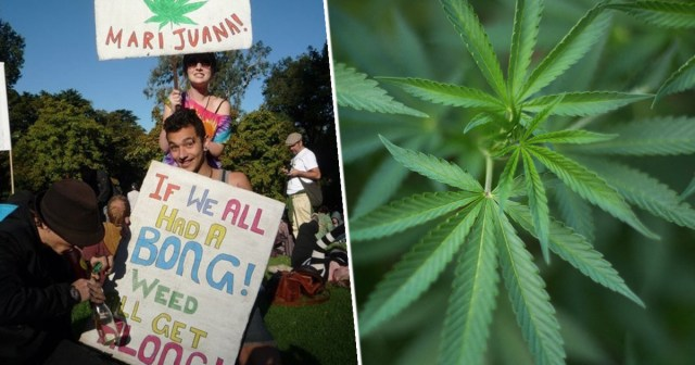 Australia Legalised Recreational Weed 420