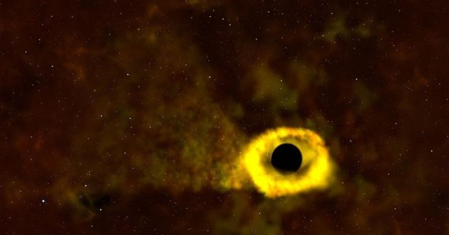 Black hole shreds star NASA