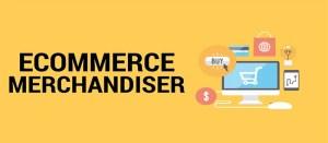 e-commerce merchandising