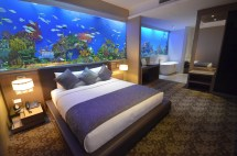 Hotel H2o - Floating With Jellies And Fish In Room