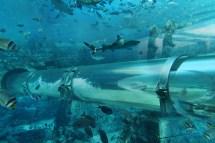 Atlantis Underwater Park