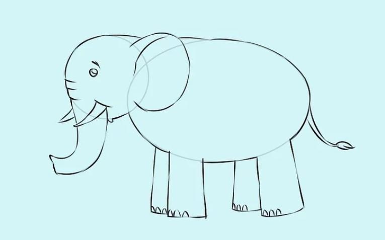 √ Cara Menggambar Hewan Beserta Contohnya
