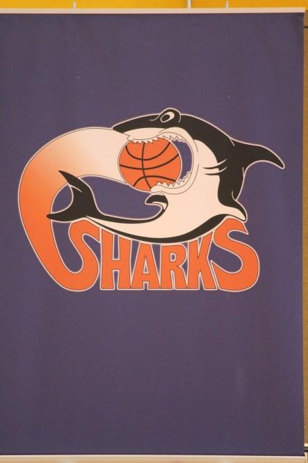 2013 April - Basketball 01