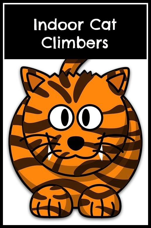 indoor cat climbers