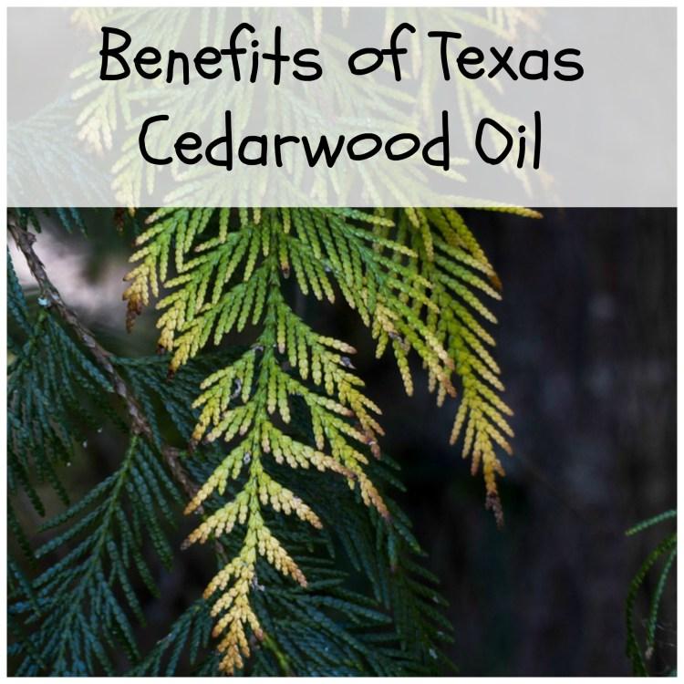 benefits of Texas cedarwood oil