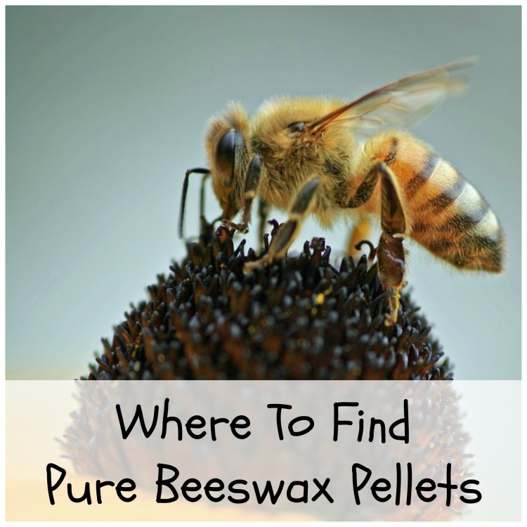 where can you buy beeswax pellets