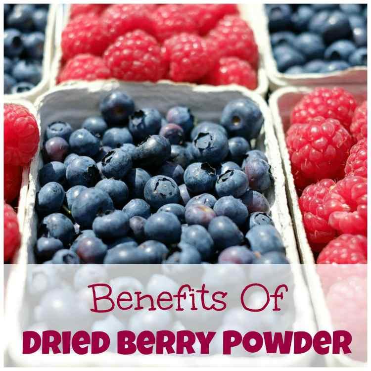 perfect raw food powder