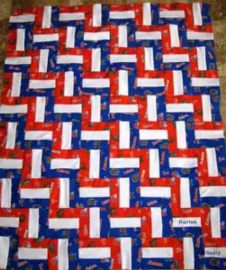 Color in a Baby quilt - Go Gators