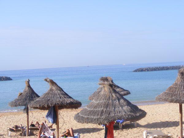 Tenerife - foto arhiva personală